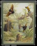 Insekten auf Motiv Farnwald