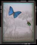 Insekten auf Motiv Tropen