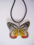 Halsband Schmetterling