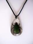 Halsband Käfer