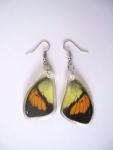 Ohrring Schmetterling