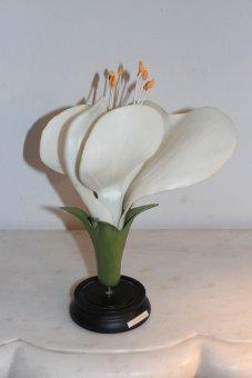 Blütenmodell Lippenblüte